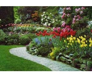 Curso de jardiner a y paisajismo for Jardineria paisajista